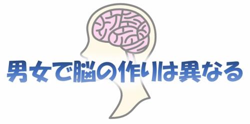 男女で異なる脳の作り